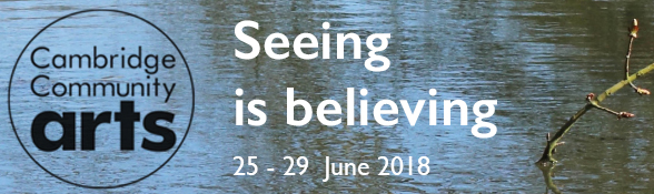 Seeing is Believing, by Cambridge Community Arts