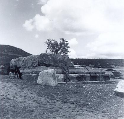 black and white photograph ofa donkey grazing next to a ruined building, with a man posing for the camera