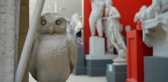Athena's owl, with statues behind against a red wall
