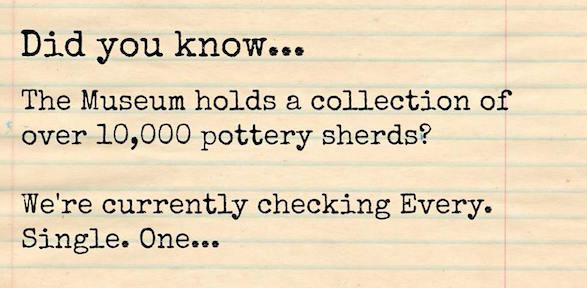 Did you know the Museum holds a collection of 10,000+ sherds?