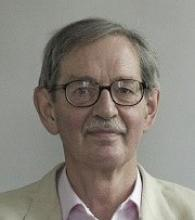 Professor Anthony  Snodgrass